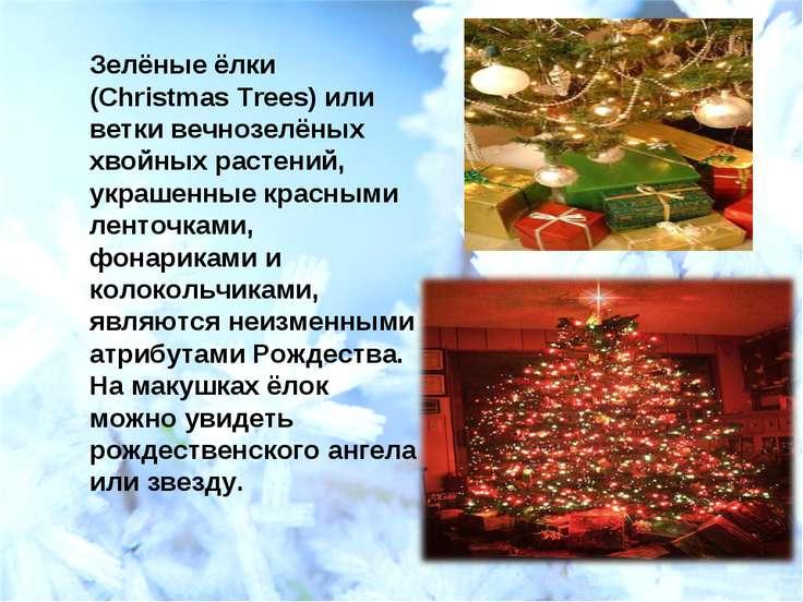 Зелёные ёлки (Christmas Trees) или ветки вечнозелёных хвойных растений, украш...