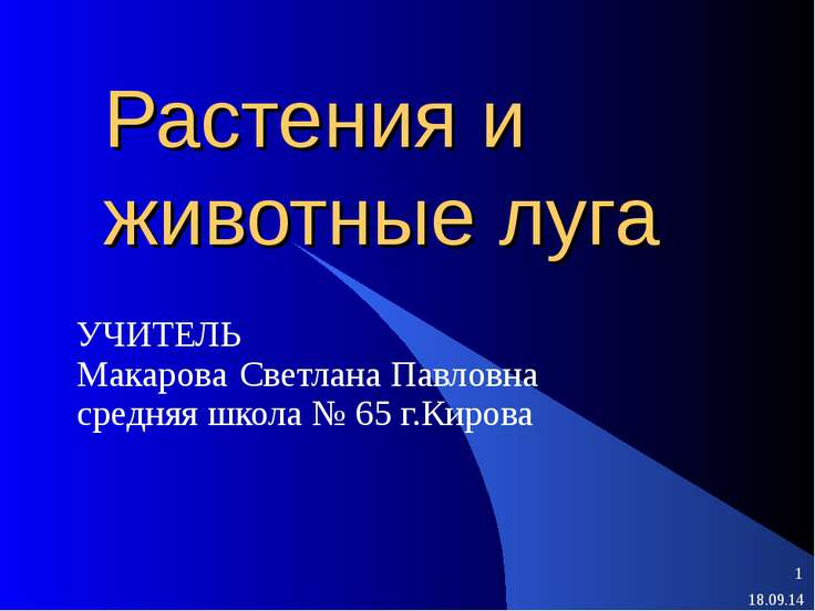 Растения и животные луга УЧИТЕЛЬ Макарова Светлана Павловна средняя школа № 6...