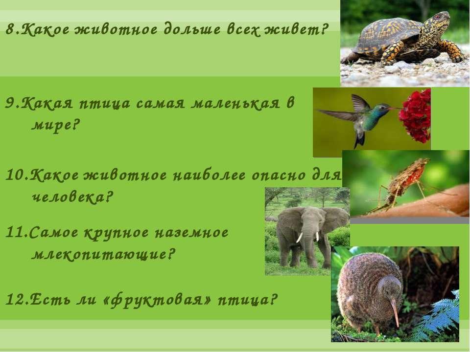 8.Какое животное дольше всех живет? 9.Какая птица самая маленькая в мире? 10....