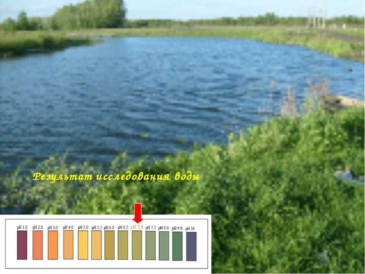 Результат исследования воды