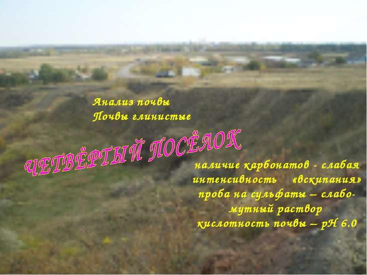 Анализ почвы Почвы глинистые наличие карбонатов - слабая интенсивность «вскип...