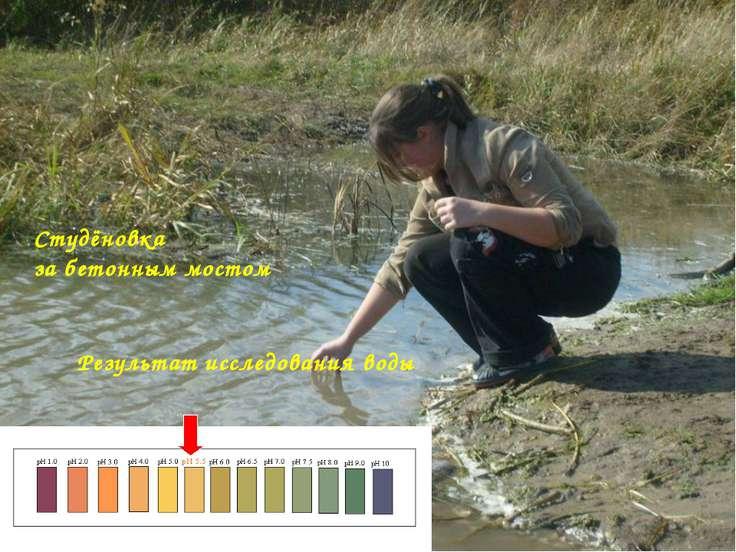 Студёновка за бетонным мостом Результат исследования воды