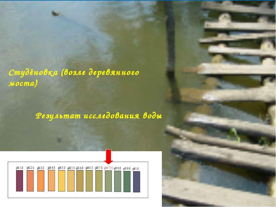 Студёновка (возле деревянного моста) Результат исследования воды