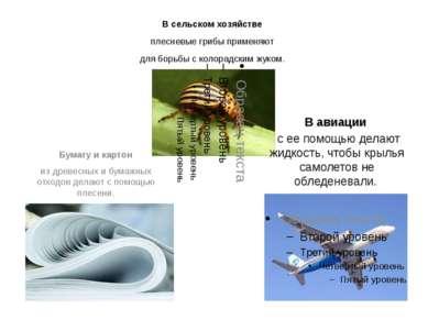 В сельском хозяйстве плесневые грибы применяют для борьбы с колорадским жуком...