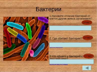Бактерии Назовите отличие бактерий от клеток других живых организмов? Не имею...
