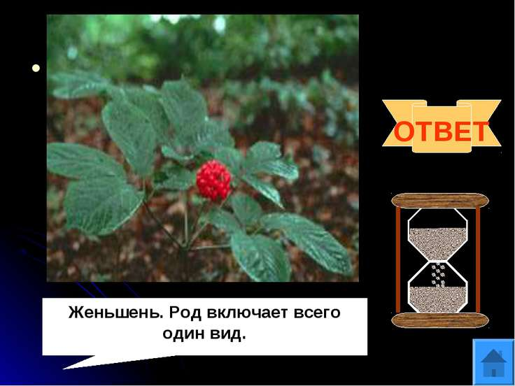 Вопрос 10 Панакс (от греческого «пан»- всё и «акос»- исцеляющий)- это родовое...