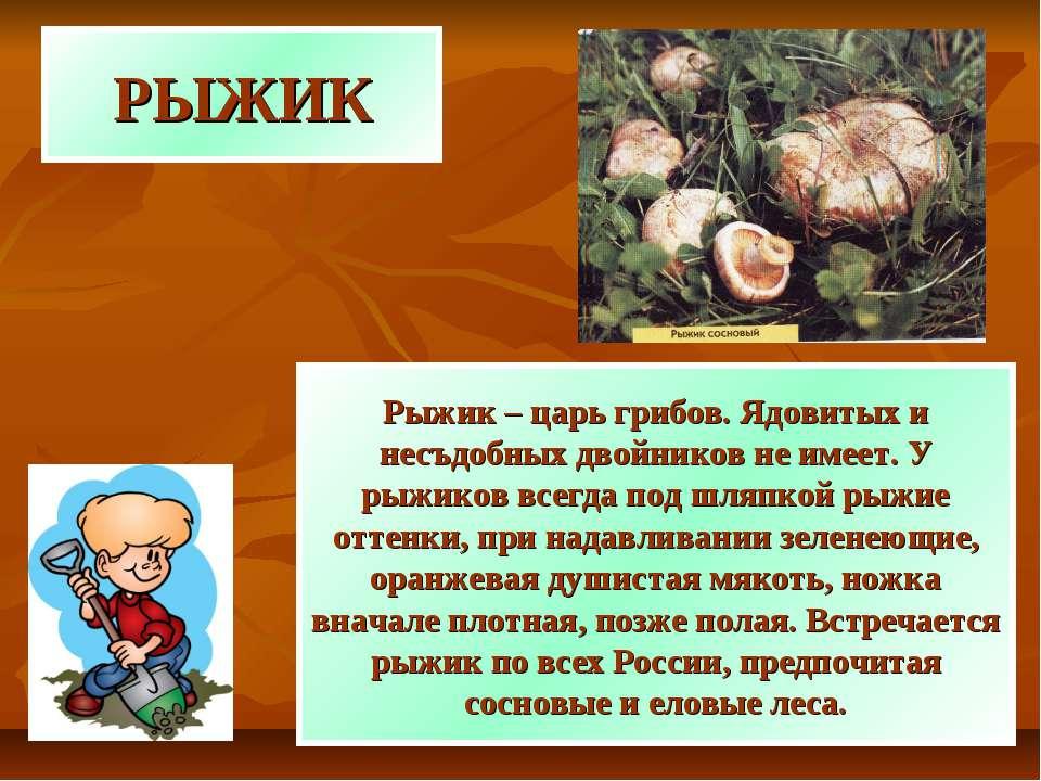 РЫЖИК Рыжик – царь грибов. Ядовитых и несъдобных двойников не имеет. У рыжико...
