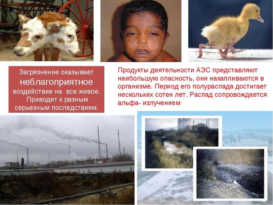 Загрязнение оказывает неблагоприятное воздействие на все живое. Приводит к ра...