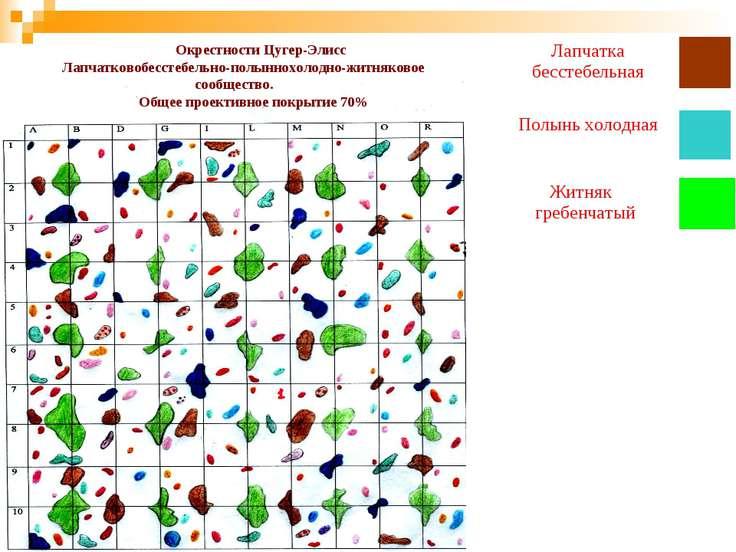 Окрестности Цугер-Элисс Лапчатковобесстебельно-полыннохолодно-житняковое сооб...