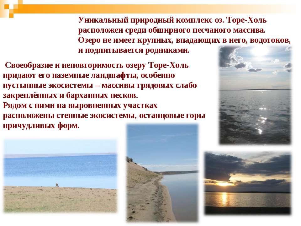 Уникальный природный комплекс оз. Торе-Холь расположен среди обширного песчан...