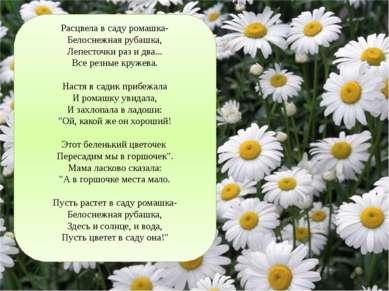 Расцвела в саду ромашка- Белоснежная рубашка, Лепесточки раз и два... Все рез...