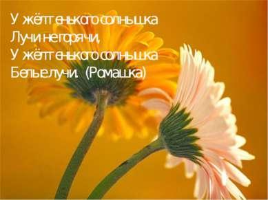 У жёлтенького солнышка Лучи не горячи, У жёлтенького солнышка Белые лучи. (Ро...