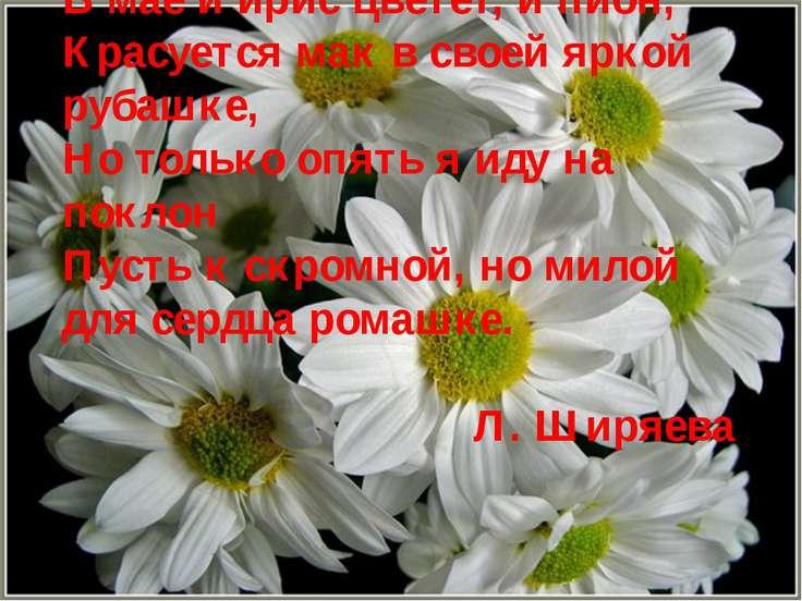 В мае и ирис цветет, и пион, Красуется мак в своей яркой рубашке, Но только о...