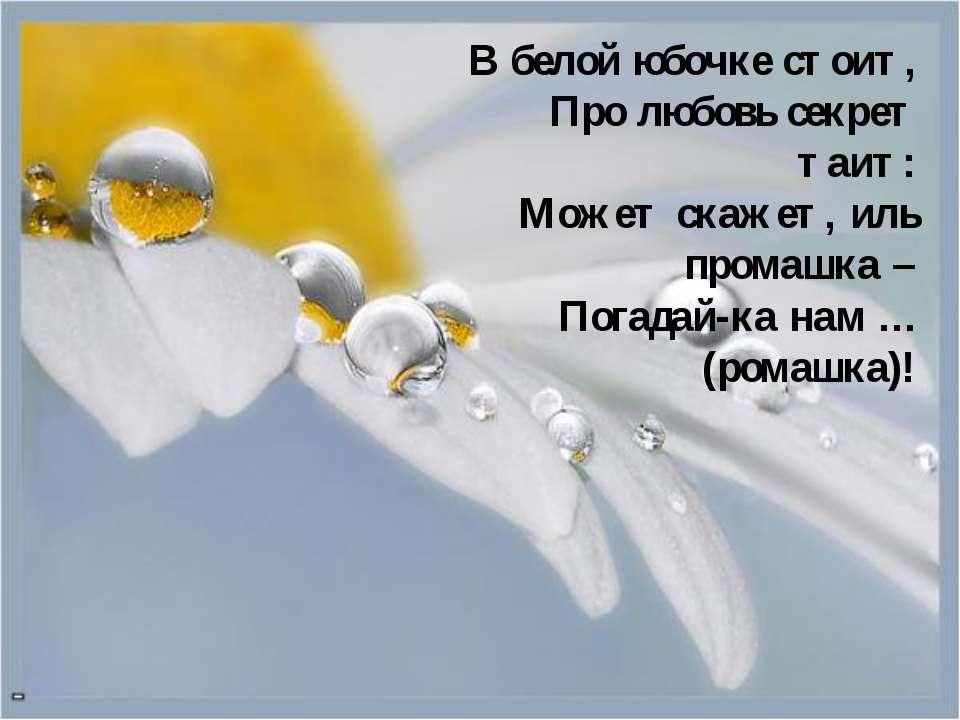 В белой юбочке стоит, Про любовь секрет таит: Может скажет, иль промашка – По...