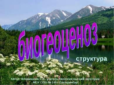 Автор: Флавианова Е.А., учитель биологии высшей категории МОУ СОШ № 146 г.Ека...