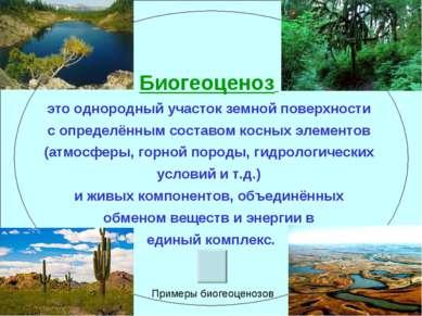 Биогеоценоз это однородный участок земной поверхности с определённым составом...