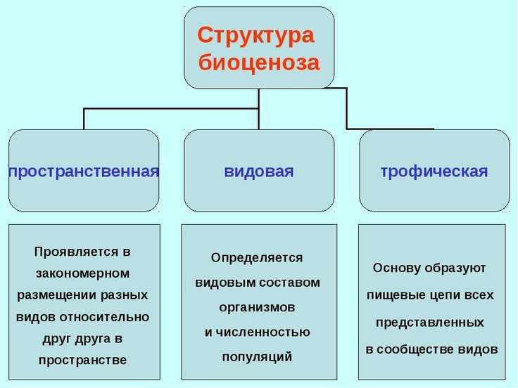 Проявляется в закономерном размещении разных видов относительно друг друга в ...