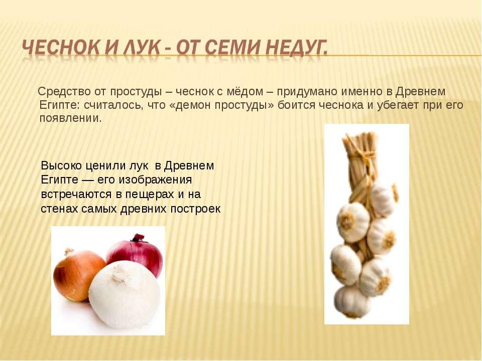 Средство от простуды – чеснок с мёдом – придумано именно в Древнем Египте: сч...