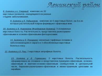8. Болота у п. Озерный: комплекс из 32 карстовых провалов, находящихся на раз...