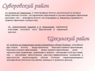 14. Болота уд, Варушицы: 2 олиготрофных болота, растительность которых предст...