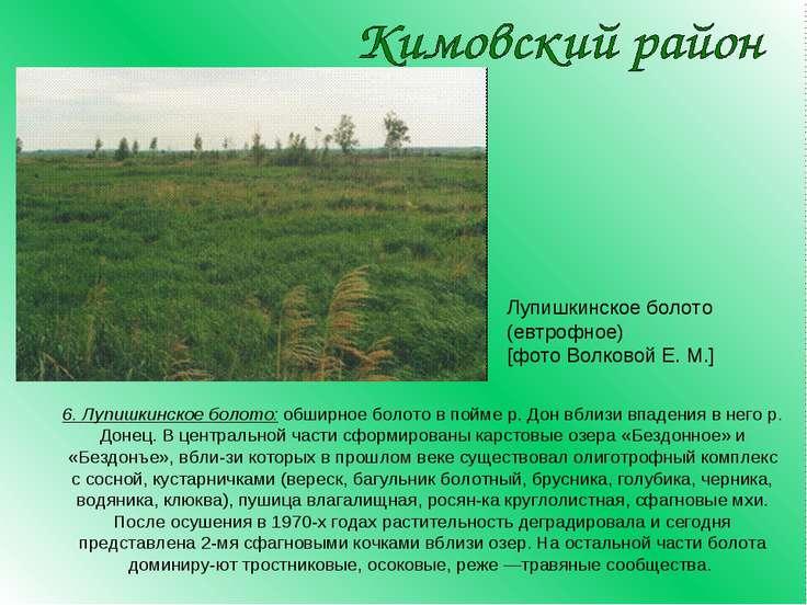 6. Лупишкинское болото: обширное болото в пойме р. Дон вблизи впадения в него...
