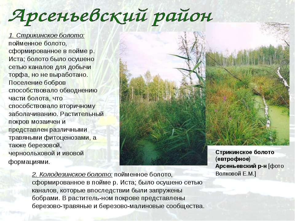 1. Стрикинское болото: пойменное болото, сформированное в пойме р. Иста; боло...