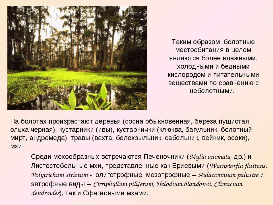 Таким образом, болотные местообитания в целом являются более влажными, холодн...