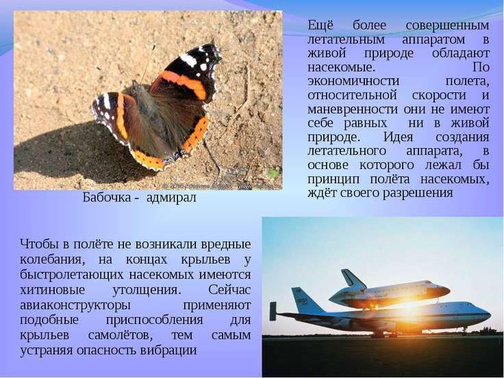 Ещё более совершенным летательным аппаратом в живой природе обладают насекомы...