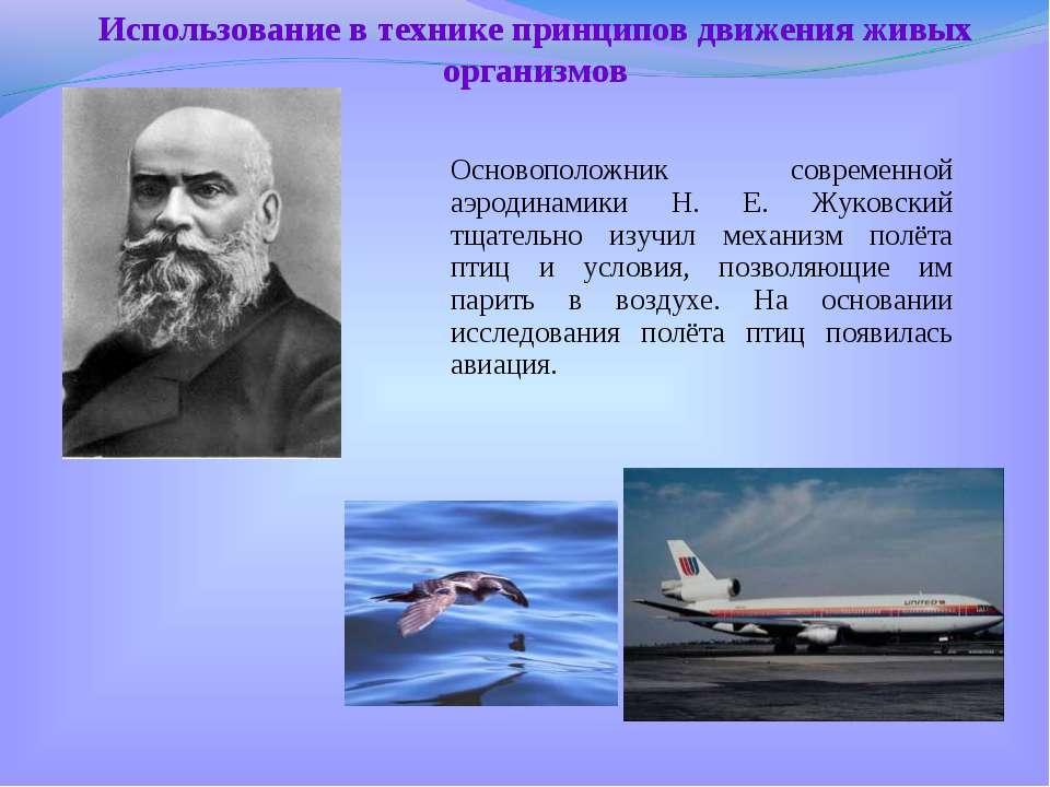 Основоположник современной аэродинамики Н. Е. Жуковский тщательно изучил меха...