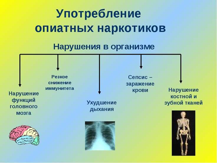 Употребление опиатных наркотиков Нарушение функций головного мозга Нарушение ...