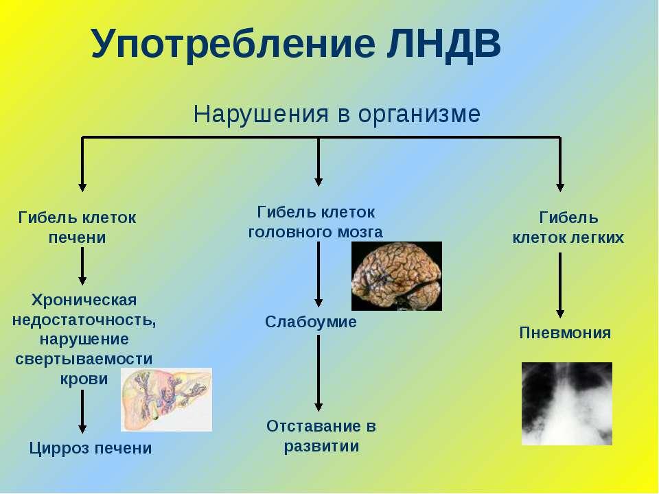 Употребление ЛНДВ Гибель клеток печени Хроническая недостаточность, нарушение...