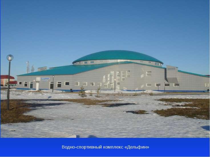 Водно-спортивный комплекс «Дельфин»