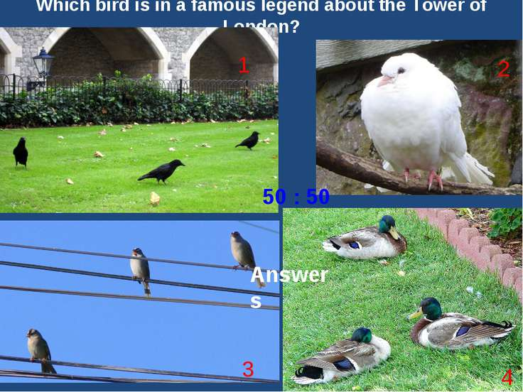 Which bird is in a famous legend about the Tower of London? 1 3 2 4 50 : 50 T...