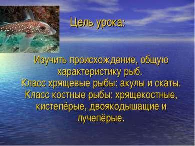 Цель урока: Изучить происхождение, общую характеристику рыб. Класс хрящевые р...