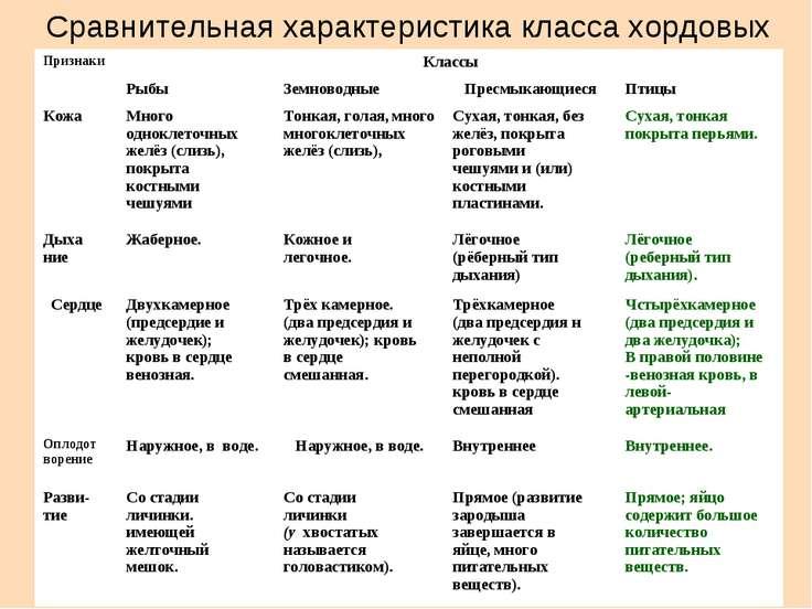 Сравнительная характеристика класса хордовых Признаки Классы Рыбы Земноводные...