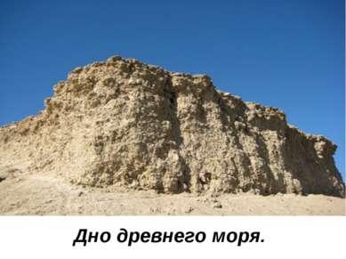 Дно древнего моря.