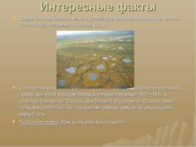 Интересные факты Самое большое болото в мире— российское Большое Васюганское...