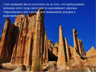 Свое название место получило из-за того, что причудливые колонны этого чуда с...