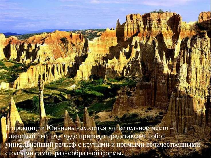 В провинции Юньнань находится удивительное место – Глиняный лес. Эту чудо при...