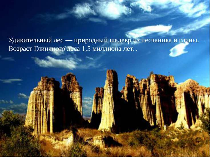 Удивительный лес — природный шедевр из песчаника и глины. Возраст Глиняного л...