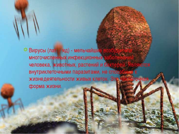 Вирусы (лат. - яд) - мельчайшие возбудители многочисленных инфекционных забол...