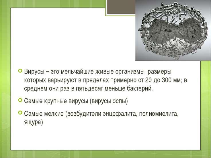 Вирусы – это мельчайшие живые организмы, размеры которых варьируют в пределах...