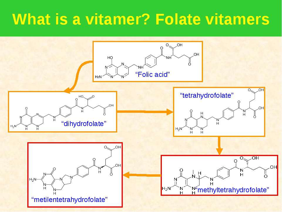 What is a vitamer? Folate vitamers