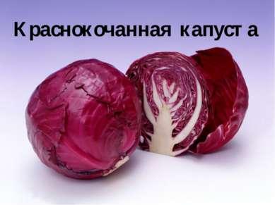 Краснокочанная капуста Краснокочанная капуста отличается от белокочанной крас...