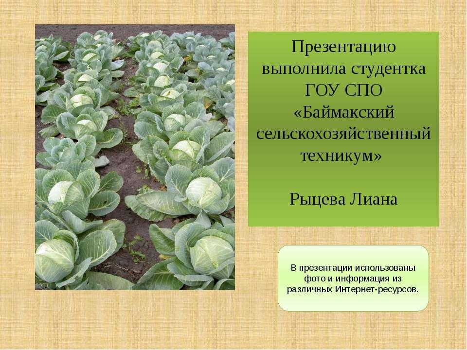 В презентации использованы фото и информация из различных Интернет-ресурсов. ...