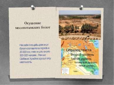Осушение месопотамских болот Некогда площадь иракских болот составляла порядк...