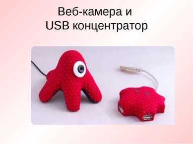 Веб-камера и USB концентратор