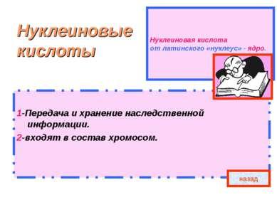 Нуклеиновая кислота от латинского «нуклеус» - ядро. Нуклеиновые кислоты 1-Пер...