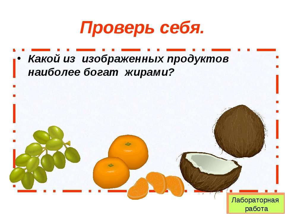 Проверь себя. Какой из изображенных продуктов наиболее богат жирами? Лаборато...