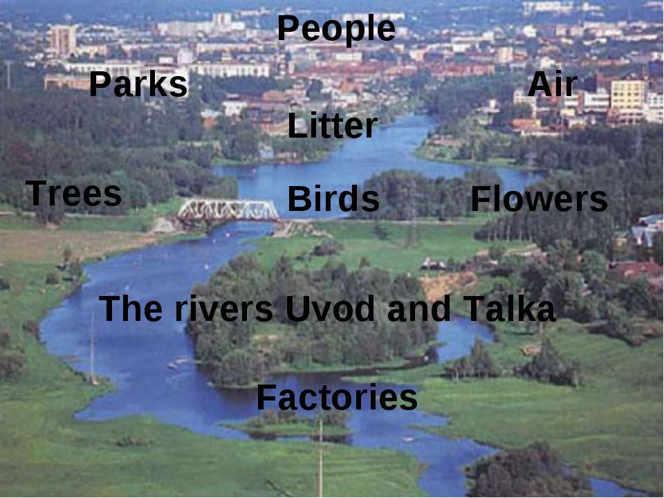Factories The rivers Uvod and Talka Flowers People Birds Trees Litter Parks Air
